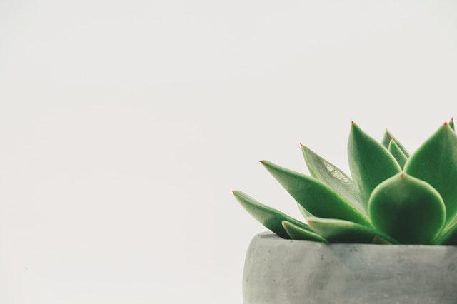 Kodin minimalismi